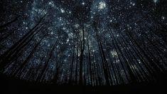 Under The Same Stars | kevinlisakfitness