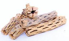 Pet Supplies Set Of Six 6-inch Pieces Fish & Aquariums Efficient Cholla Wood
