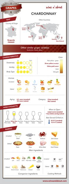 All about Chardonnay Grapes #wine #infografía