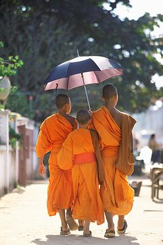 Young Monks, Luang Prabang, Laos