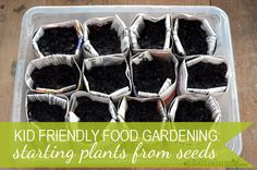 A feature from Picklebums - Kid Garden: Starting Plants from Seeds