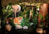 Jungle Theme Party, Jungle Props For Hire, African Themed Event