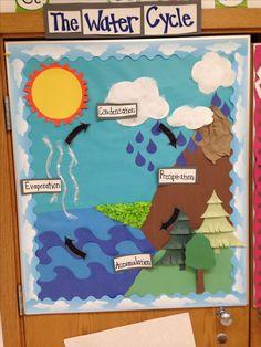 Water cycle bulletin board- student teaching 101