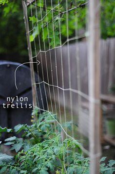 DIY : how to build a nylon trellis for your garden