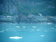 Alaska Cruise: Cruising Through Glacier Bay | Girl-in-Chief Glacier Bay National Park, National Parks, Glacier Bay Alaska, Alaska Cruise, Photo Essay, Vacation, Outdoor, Outdoors, Vacations