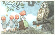 FANTASY Giant Owl and Fairies in Mushroom Caps Old Postcard Elsa Beskow