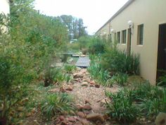 A dry riverbed at Boutique hotel, in Maropeng