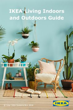 Find the perfect indoor plant for every home with the IKEA plant guide.