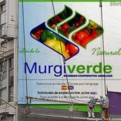 murgiverde - Buscar con Google