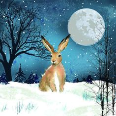 Hare and full moon painting. Watercolor Cards, Watercolor Paintings, Moon Painting, Hare Illustration, Rabbit Art, Bunny Art, Woodland Creatures, Christmas Art, Animal Paintings