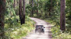 8 Last-Minute Weekend Adventures near Brisbane | Things to do