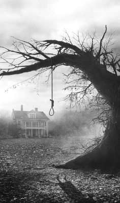 haunting. house. old dead leafless tree. fog. mist. dark. | RP » (12) horror movie | Tumblr