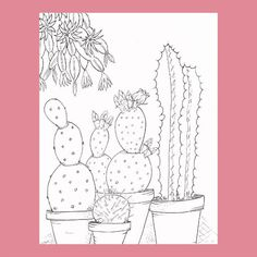 Printable Cactus Coloring Page Adult by FourthAvePenandInk on Etsy