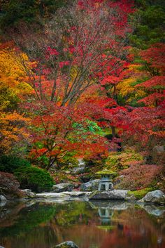 Washington Arboretum - Seattle Washington Arboretum