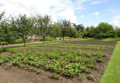 Grappenhall Heys Walled Garden - Home Page