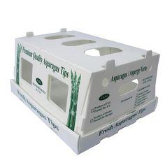 Packing Carton Plast,Cartonplast Manufacturers,Corrugated Plastic Cartonplast Sheet,Cartonplast Box For Packaging,Folding Cartonplast Box,2mm White Cartonplast,Cartonplast Plastic Sheet,5mm Black Cartonplast,2mm 3mm 4mm Polypropylene Pp Cartonplast Sheet,Cartonplast Box,Plastic Cartonplast Sheet,2mm 3mm 4mm 5mm Polypropylene Pp Plastic Carton Plast,Cartonplast Board,8mm White Cartonplast,Packaging Cartonplast Plastic Sheet,Pp Cartonplast Box Wholesale,Hollow Cartonplast Sheet,Cartonplast Pp