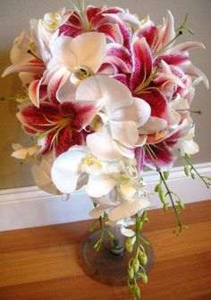 cascade with stargazers and white phals