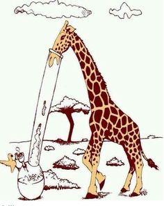 giraffe, bong, and weed kép Cannabis, Weed Humor, Puff And Pass, Up In Smoke, Smoking Weed, Smoking Room, Psychedelic Art, Bongs, Giraffes