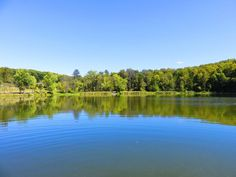 Lackawanna State Park- Scranton, Pennsylvania