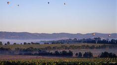 Yarra Glen, Yarra Valley & Dandenong Ranges, Victoria, Australia