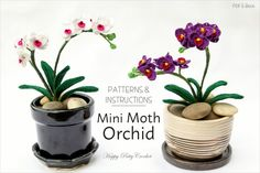 Crochet Pattern for a Mini Moth Orchid for home decor by Happy Patty Crochet