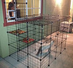 Build A Do-It-Yourself Outdoor Cat Enclosure Or Run