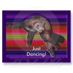 #Ferret #postcards #sandyspider #zazzle #sold #75%off Dec. sale