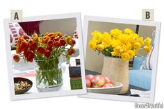 Would You Rather: Orange or Yellow Ranunculus?