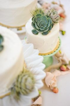 Succulent Cake Toppers {Click photo for more event details}  | LFF Designs | www.facebook.com/LFFdesigns