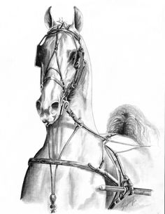 """""""UNTITLED #4"""" 