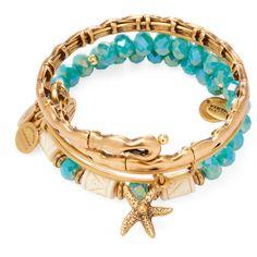 Alex & Ani Women's Seaside Star Fish Expandable Wire Bangle Bracelets ($69) ❤ liked on Polyvore featuring jewelry, bracelets, multi, starfish jewelry, expandable bangle bracelet, hinged bracelet, hinged bangle and starfish bangle