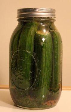 Homemade Kosher Dill Pickles