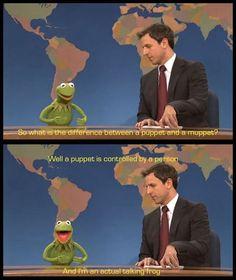 Kermit Is Not A Puppet