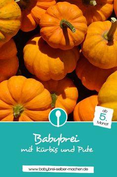 Rezept: Mittagsbrei für Babys mit Kürbis und Pute. Dieser Babybrei ist für Babys ab dem 5. Monat geeignet.