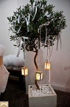 Διακοσμήστε μικρές γλάστρες με ελιές στο χώρο της δεξίωσης του γάμου σας με λευκές κορδέλες και κρεμαστά φαναράκια για ένα ακόμη πιο ρομαντικό στυλ.