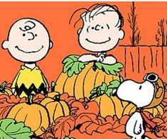 Google Image Result for http://parentpreviews.com/legacy-pics/its_the_great_pumpkin_charlie_brown.jpg