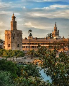Es tan bonita que parece de verdad. | 📸 @calicles Valencia, Big Town, Seville, Tower Bridge, Barcelona Cathedral, Life Is Good, Louvre, Building, Places