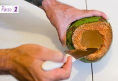 como-fazer-vaso-suspenso-com-coco-verde-2 copy