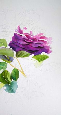 Watercolor Rose Painting Tutorial – Heidi Klum Rose.   Go to link to see finished painting.  Gorgeous !!