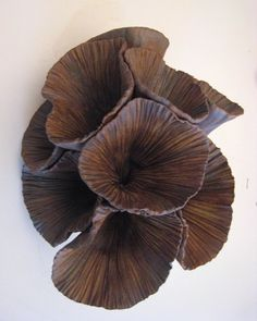 Naomi Blumenthal sculpture and ceramics. Looks like Nest Fungi to me! Pottery Sculpture, Sculpture Clay, Abstract Sculpture, Ceramic Clay, Ceramic Pottery, Organic Sculpture, Organic Ceramics, Sculptures Céramiques, Paperclay