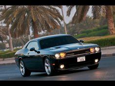 2010 srt black dodge challenger pictures | 2010 Dodge Challenger SRT8 Black