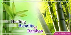 9 Amazing Healing Benefits of Bamboo Shoots - Health & Foods
