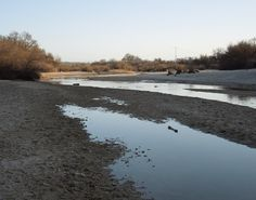 Sights Along the Salinas River on a February Sunday Afternoon - News - Bubblews Salinas River, February, Sunday, News, Water, Outdoor, Gripe Water, Outdoors, Domingo