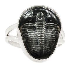 Fossil Trilobite 925 Sterling Silver Ring Jewelry s.8 SR210777   eBay