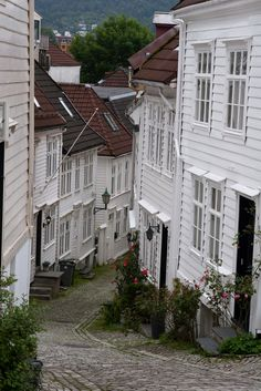 Bergen, Norway by Dirk-jan Davids Blu