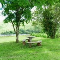 Thorner Cottage, 4 bedroom self-catering accommodation in Camperdown a picturesque retreat overlooking a bass dam in the Natal Midlands. Pet Friendly Accommodation, Stepping Stones, Catering, Bass, Golf Courses, Cottage, Bedroom, Outdoor Decor, Plants