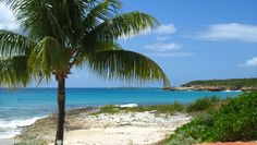 Covecastles, Shoal Bay West | Anguilla Beaches