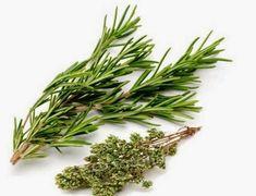 Rosmarino ed Origano...Due erbe importanti e Veri farmaci per curare il Diabete…