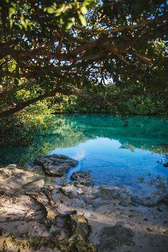 Casa Cenote, Tulum, Mexico