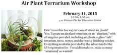 Register for the Airarium Workshop to create your own wee world of air plants in a globe terrarium. Info at jmu.edu/arboretum